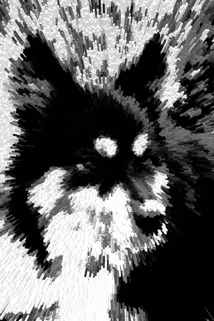 portraitdog